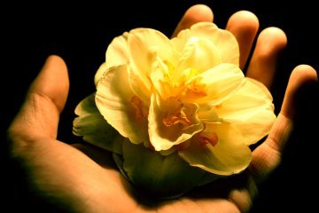 Leadership: Holding out blessing to others. Signified by a flower in hand